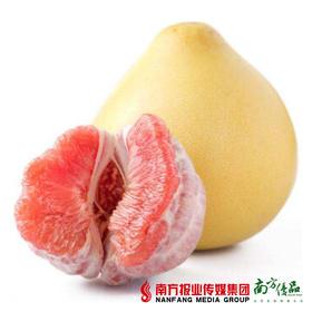 【酸甜可口】梅州红肉蜜柚 1个2斤左右