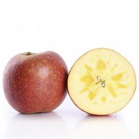 四川凉山丑苹果