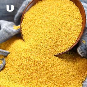 半岛优品 | 2018新米上市 陕北米脂小米 农家月子米 养胃养颜 现磨现发 5斤装