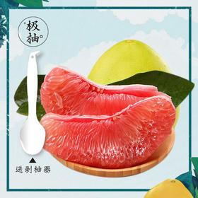 【枫颐】极柚红肉蜜柚 5斤/箱 2个装  正宗平和琯溪蜜柚 一个有梦想的柚子