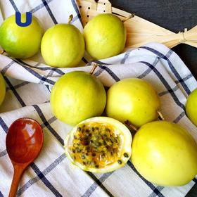 半岛优品   福建漳州黄金百香果3斤装 香甜美味夏日美白解渴必备品 新鲜直达