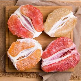 【四大名柚】福建平和琯溪蜜柚 红柚+白柚+黄金柚+三红柚礼盒 皮薄肉厚 酸甜多汁