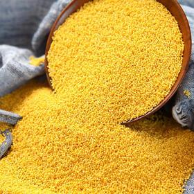 2019新米|陕北米脂小米 农家生态月子米  现磨现发 5斤装包邮