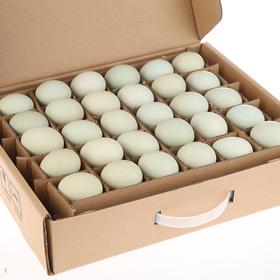 预计10号发货 | 新鲜绿壳乌鸡蛋 富含多种微量元素 蛋黄大 蛋清粘稠  30枚  包邮【破损必赔】