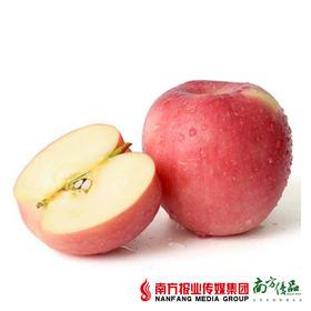 【脆甜多汁】云南野生苹果礼盒装 7-8斤(70-75mm)