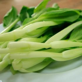【同初安心屋】安全有机的鸡毛菜 1500g丨仅发上海地区