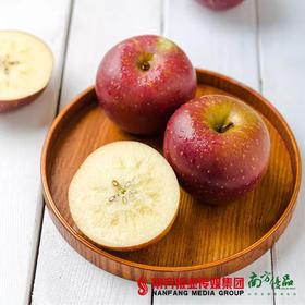 【酸甜多汁】云南野生苹果  5斤  80mm