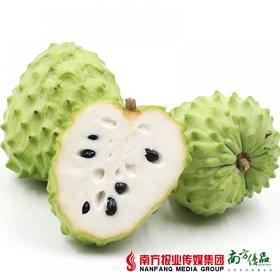 【绵甜软糯】台湾释迦特级果礼盒装 8个 6-7斤