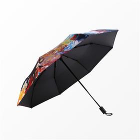 Missrain丨艺蕊星云三折晴雨伞