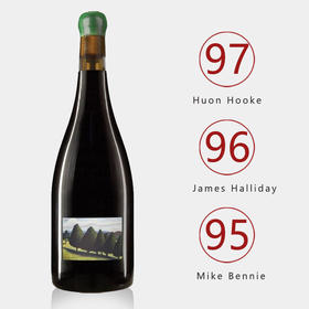 【膜拜黑皮诺】吉普斯兰黑皮诺2017,JR名著《世图》产区唯一推荐!酒友赞:勃艮第特级园品质!