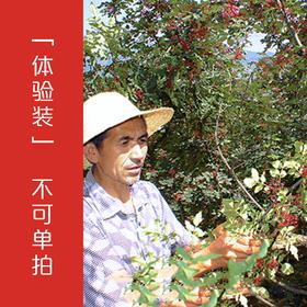 「野生花椒体验装」【不可单拍】大红袍花椒 特香特麻椒 10g