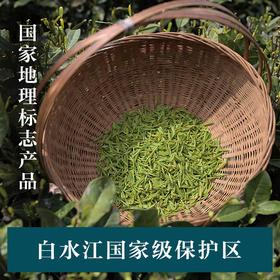 文县绿茶 2018新茶绿茶清香型特级高山茶叶绿茶 礼盒装80g