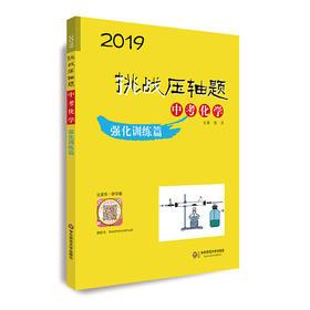 【中考化学】2019挑战压轴题  强化训练篇