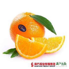 【无渣多汁】南非金巴利甜橙 6-8个  3.5斤左右