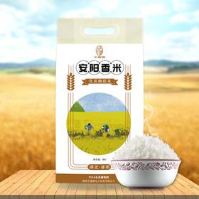 【当季新鲜大米】安阳香米10斤装【十堰主城区包邮】