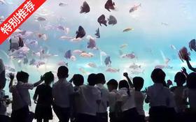 【抢购】39.9元起抢海立方海洋公园1大1小通票,一起带孩子来探索海洋世界吧!