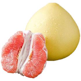 线下店活动正宗福建平和琯溪蜜柚红心柚子现摘现发新鲜柚子单果1.8-2.2斤2个装