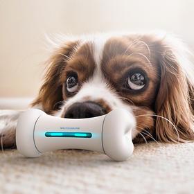 【Wickedbone 疯狂的骨头】智能宠物骨头玩具 狗狗互动人工智能机器人