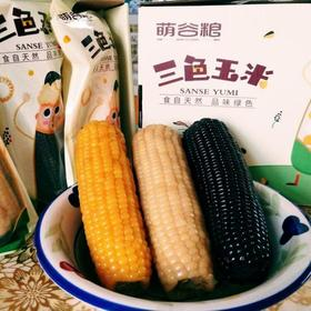 珠江农产品嘉年华丨忻州三色糯玉米 净重3000g( 9根) 全国包邮
