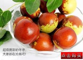 大荔冬枣 新鲜采摘 5斤装