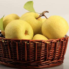 砀山酥梨  乾隆贡梨 鲜果新鲜上市 黄亮美色,皮薄多汁,肉多核小,甘甜酥脆