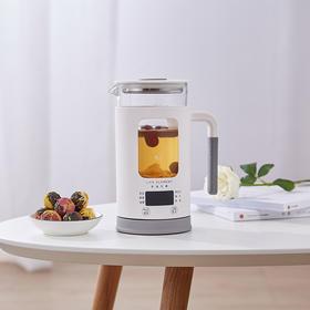 生活元素 养生壶迷你小容量多功能玻璃煮花茶杯煮茶器电热烧水壶