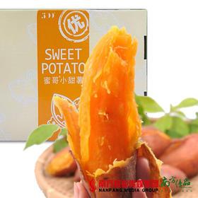【香甜软糯】红薯礼盒装  5斤左右
