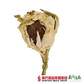 【健康滋补】新疆天山雪莲 1朵