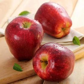 帮卖精选 | 外脆内粉  天水花牛苹果  老人宝宝都能吃的苹果,细腻香甜多汁 果香袭人