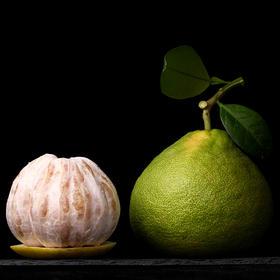 【三十年树龄】度尾文旦柚  汁多、柔嫩无渣,且越丑越好吃!精美礼盒装(精品单果1.4-2.2斤)
