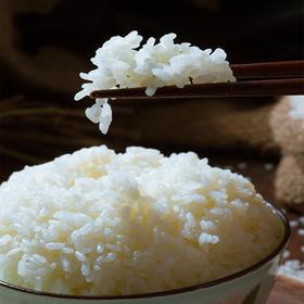 吉林珍珠香大米 Q弹软糯  粥汤浓稠 香滑养人 细腻可口  米粒圆润饱满  煮粥粘性大 蒸饭更香甜