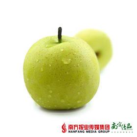 【皮薄多汁】安徽砀山酥梨 约5斤 约350g/个