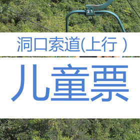 九皇山洞口索道(上行)儿童票