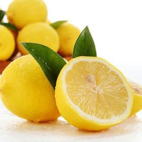优选|四川安岳新鲜黄柠檬1斤包装(现摘现发 酸爽多汁)