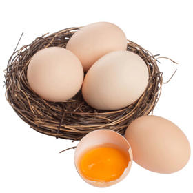 纸厂河精准扶贫户散养土鸡蛋 30枚/盒精品礼盒装 全国包邮
