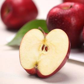 礼县天水花牛苹果甜脆新鲜水果花牛6斤装