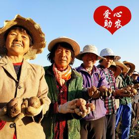 爱心助农庆丰收 |  静乐高原红皮土豆   手工播种挖采  红皮轻松撕  甜丝丝  软 糯 香 甜!