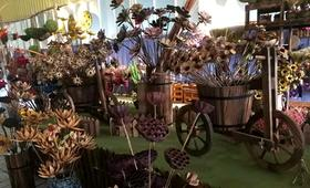 【10月14日】放慢脚步,感受时间沉淀之美---干花博物馆亲子一日游