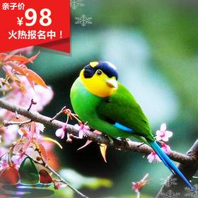 11.03相聚合肥【包公园】,看候鸟南归,实地了解候鸟生活习性!