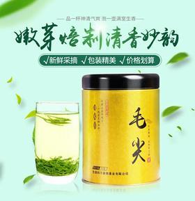 毛尖 绿茶茶叶嫩芽浓香型茶