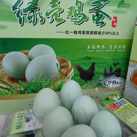 【爱心扶贫】保亭什玲林下散养鸡专业合作社的绿壳鸡蛋