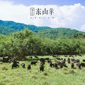 【爱心扶贫】海南华润五丰农业开发有限公司的万宁东山羊(两种规格随机发货)