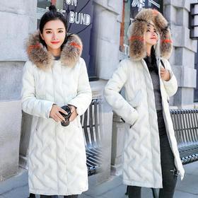 CQ1859CB修身青春时尚潮流简约棉服