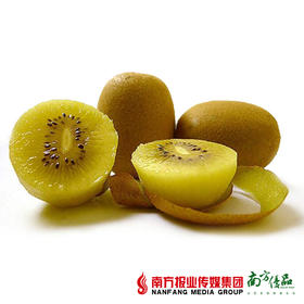 【香甜口感】四川金艳黄心猕猴桃 约90g/个   6个