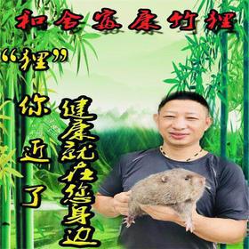 【爱心扶贫】临高和舍富康养殖农民专业合作社养殖的竹狸