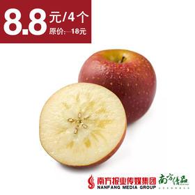 【酸甜多汁】云南野生苹果  4个 果径70-75mm
