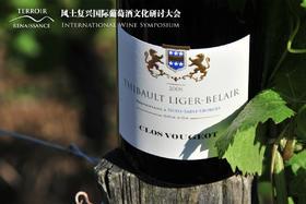 【FX】勃艮第顶级名庄Thibault Liger-Belair大师班:2014 年份珍酿平行品鉴