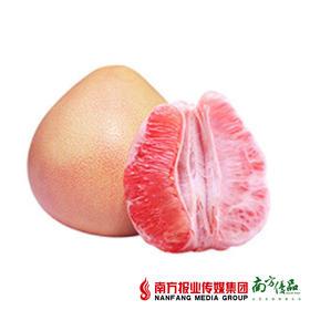 【酸甜可口】梅州精选三红柚 2个 约2斤/个