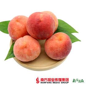 【入口香甜】蒙阴特甜水蜜桃礼盒装 8个/盒 约4.5斤