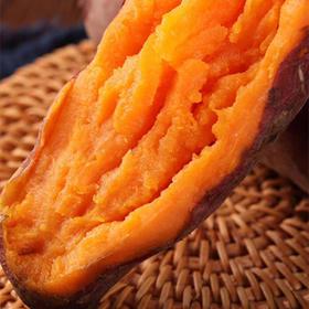 新疆天山蜜薯 无公害新疆红薯糯香甜蒸烤新鲜 5斤 包邮